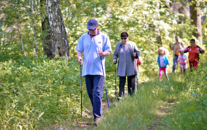 Скандинавская ходьба в Бузулукском бору