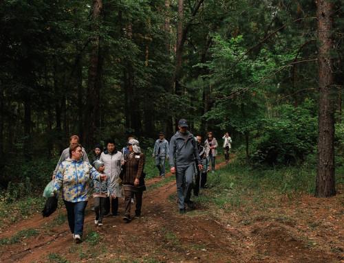 Активный отдых и прогулки по Бузулукскому Бору
